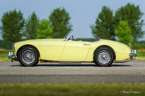 Austin Healey 3000 Mk I two-seater, 1961