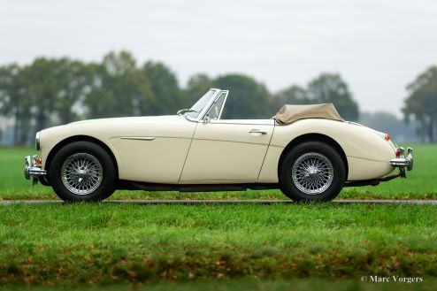 Austin Healey 3000 Mk 3 ph 2, 1965